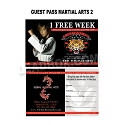Guest Pass Martial Arts 2